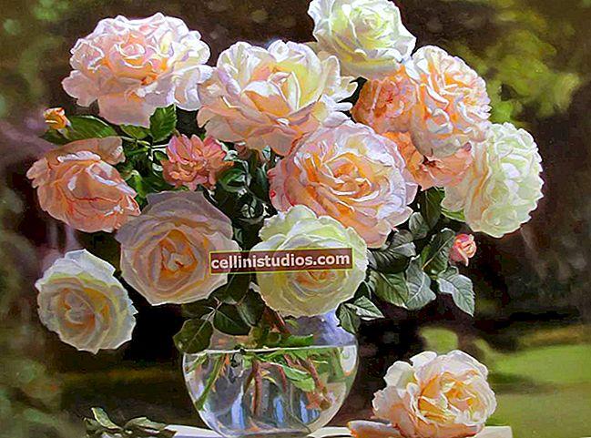 Cara menyimpan bunga dalam vas lebih lama